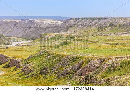 Dry arid desert slopes covered with lush green vegetation at spring time