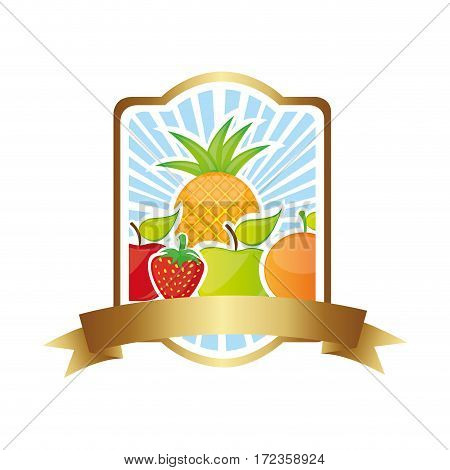 colorful silhouette rectangle heraldic border with still life fruits vector illustration