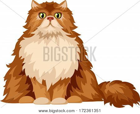 Vector illustration of a fluffy Persian cat isolated on a white background.