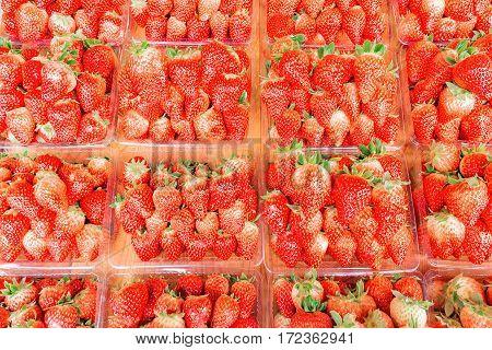 Fresh strawberry on the fruit market showcase.
