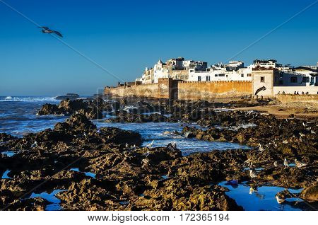 View to the Essaouira city - an ancient port on the Atlantic coast in Morocco, North Africa
