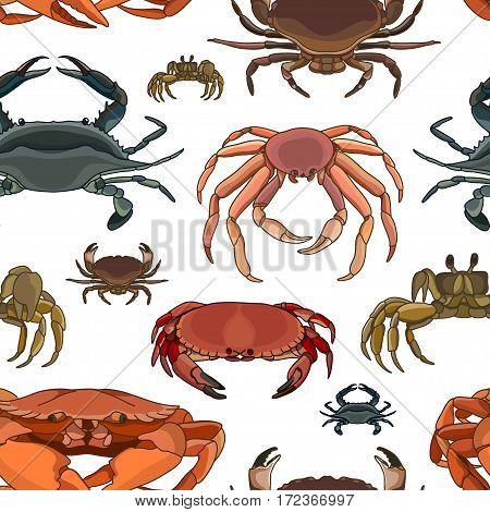 Crabs vector set pattern. Vector illustration, EPS 10
