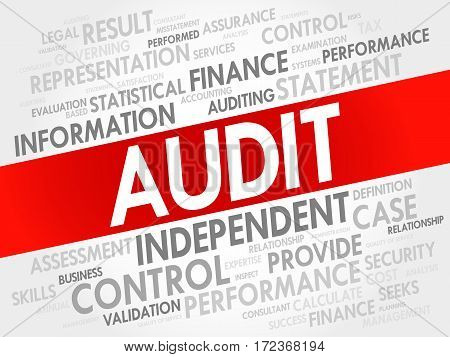 Audit Word Cloud Collage