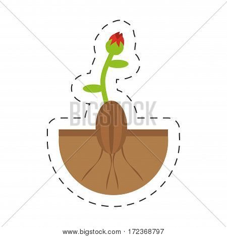 plant grows flourishes sprout vector illustration eps 10