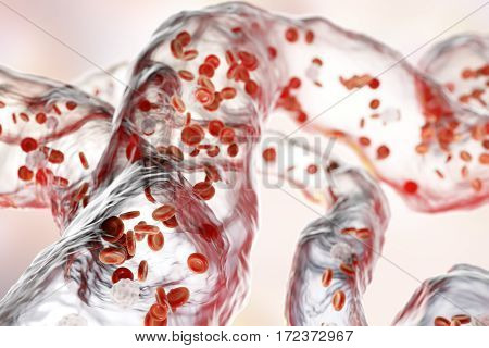 Network of blood vessels, capillaries with flowing blood cells, 3D illustration