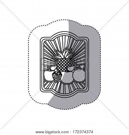 emblem fruits icon stock, vector illustration design