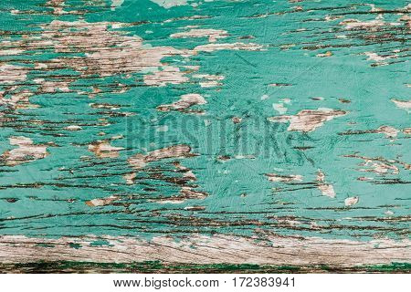 Green Old Wood Plank Textures