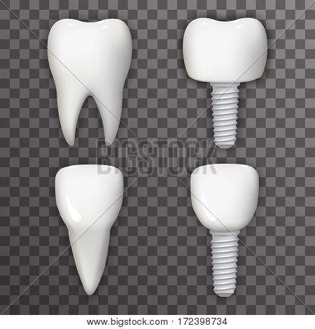 Dental Implant Realistic Tooth Poster Transperent Stomatology Icon Template Background Mock Up Design Vector Illustration