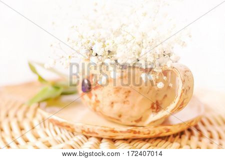 Spring natural background with white flowers in a cup, Selective Focus, copy space