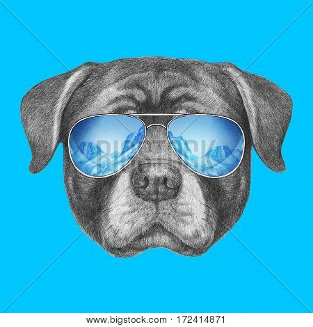 Portrait of Rottweiler with sunglasses. Hand drawn illustration.