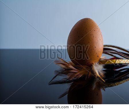 Single brown chicken egg chicken eggshell organic food ingredient protein