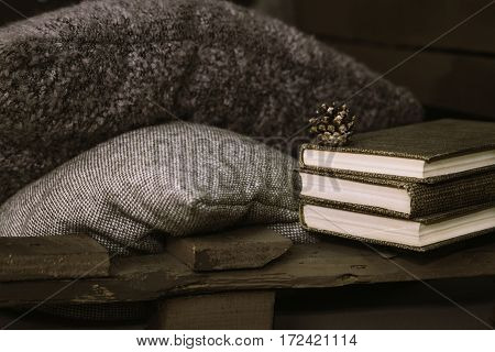 books lie on a wooden bench on a background of brown pillows