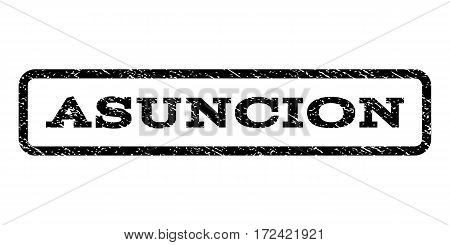 Asuncion watermark stamp. Text caption inside rounded rectangle frame with grunge design style. Rubber seal stamp with dirty texture. Vector black ink imprint on a white background.