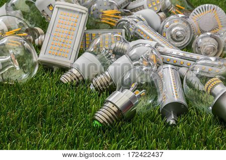 big family of ecological and economical LED bulbs of various types on the green grass