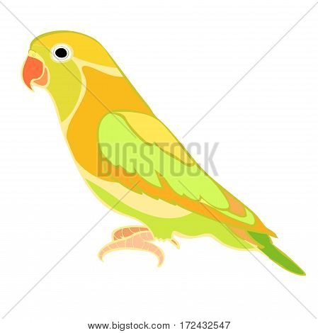Lovebirds Parrot With A Red Beak. Vector Illustration