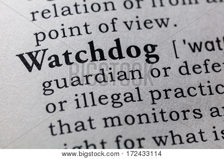 Fake Dictionary Dictionary definition of the word watchdog. including key descriptive words.