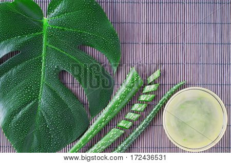 Aloe vera gel with aloe vera leaves on wooden table. Natural cosmetic ingredients. Fresh aloe vera plant on wooden board flat lay. Spa concept top view.