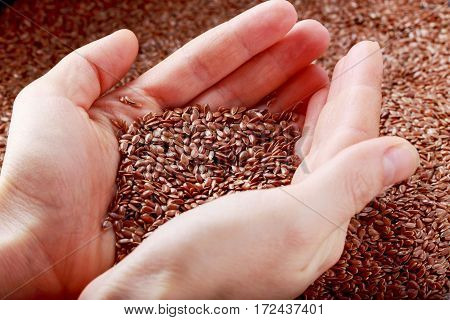 Flax seeds in the hands of a woman
