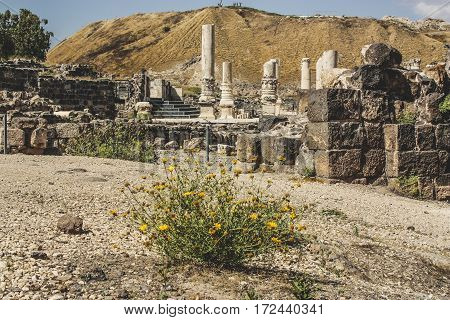beit shaan old antique city of rome empire