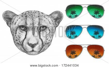 Portrait of Cheetah with glasses. Hand drawn illustration.