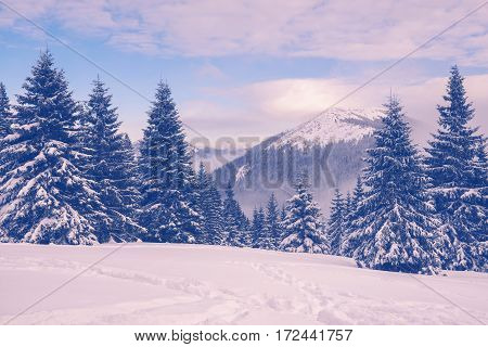 Winter Landscape With Mountains On Horizon During Dusk