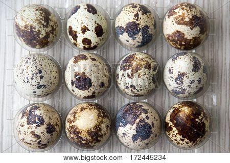 Organic Quail Eggs In A Plastic Box