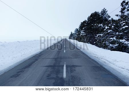 Snowy road through the forest, with trees on the roadside