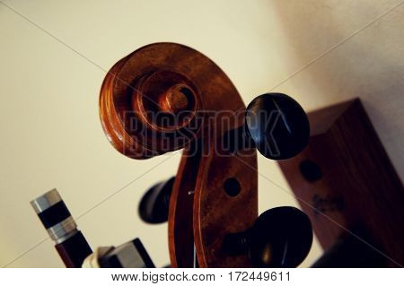 A photo of the scroll on a violin