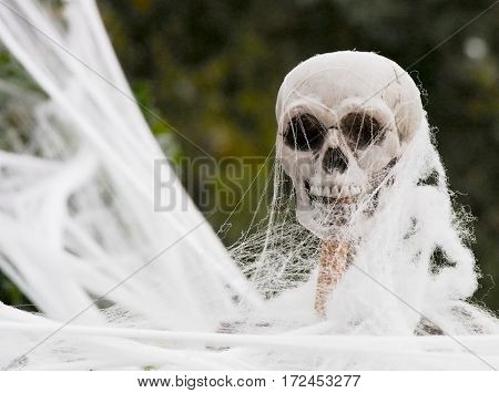 Plastic Skeleton Covered In Fake Web For Halloween Decoration