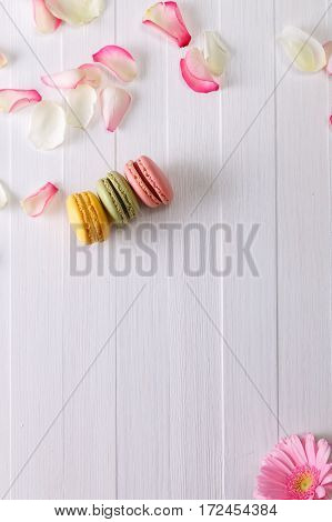 Macaroon cakes with pink rose petals and Gerbera flower. Different types of macaron. Colorful almond cookies. On white wooden rustic background.