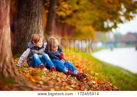 young boys best friends sitting under the tree in autumn park