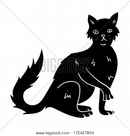 British Semi-longhair icon in black design isolated on white background. Cat breeds symbol stock vector illustration.