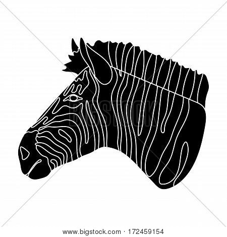 Zebra icon in black design isolated on white background. Realistic animals symbol stock vector illustration.