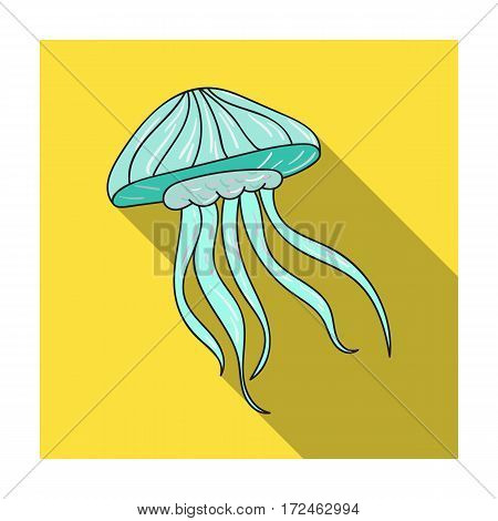 Jelly fish icon in flat design isolated on white background. Sea animals symbol stock vector illustration.