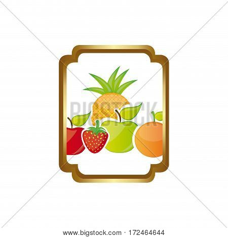 colorful silhouette curved rectangle decorative heraldic frame with still life fruits vector illustration