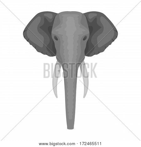 Elephant icon in monochrome design isolated on white background. Realistic animals symbol stock vector illustration.