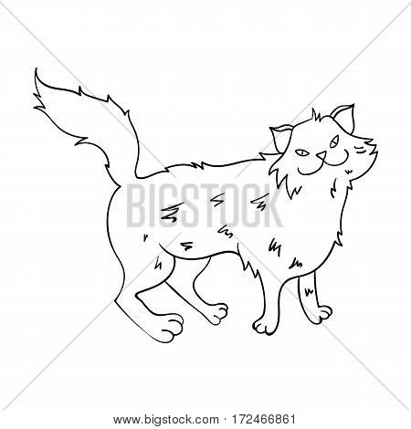 Norwegian Forest Cat icon in outline design isolated on white background. Cat breeds symbol stock vector illustration.