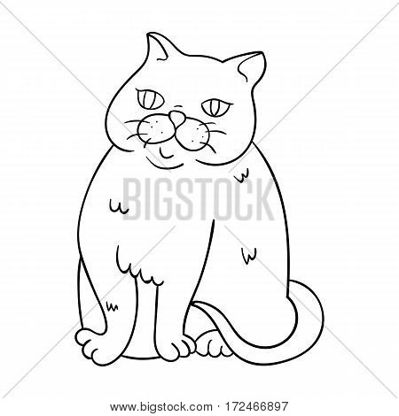 Exotic Shorthair icon in outline design isolated on white background. Cat breeds symbol stock vector illustration.