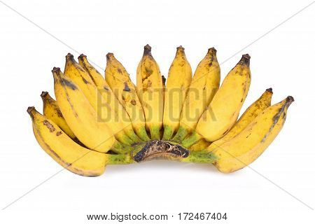 Cultivate Yellow Asian banana isolated on white background