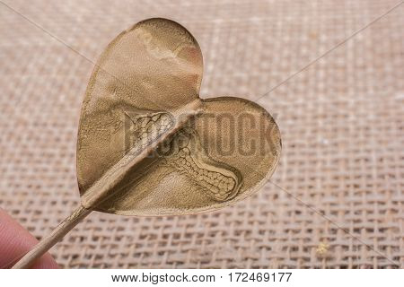 Little Gold Color Heart Shape In Hand