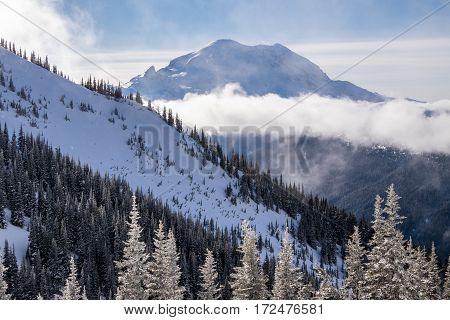 Fresh snow and Mt. Rainier in a beautiful winter scene