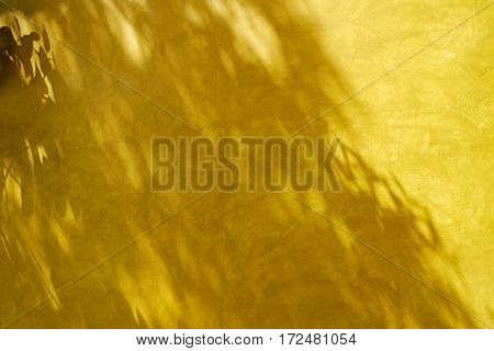 Shadow of leaves on retro style yellow wall