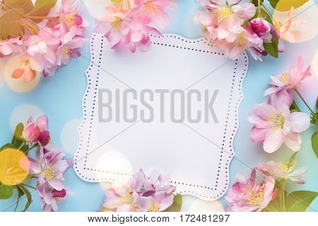 Spring flower with card on blue background
