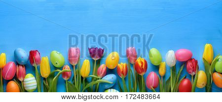 Easter eggs with tulip flower on blue background