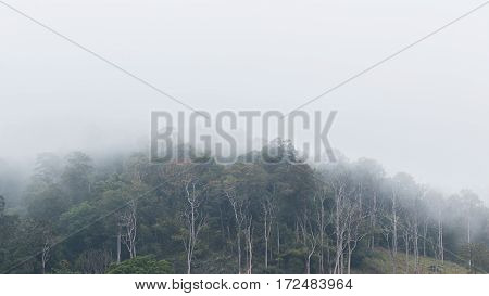Mountains and fog In the early winter
