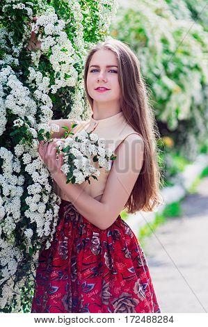 Beautiful Model Range Bush Of White Flowers