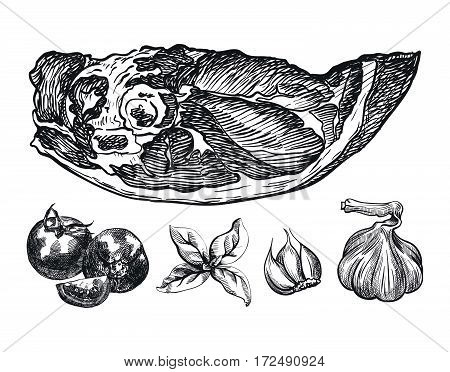 hand drawn sketches of pork shoulder blade and spices on a white background