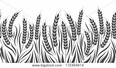 Harvest horizontal pattern vector illustration. Wheat, rye or barley field isolated on white background