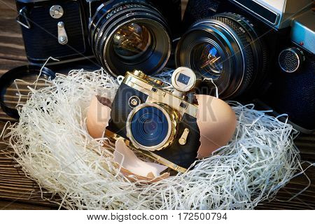 Slr Cameras And Compact As Parents And Baby In Nest