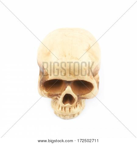 Human skull resin replica as a halloween decoration, isolated over the white background